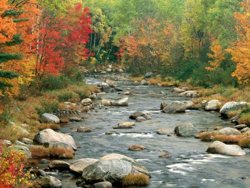 nature-wallpaper-autumn-colors-white-mountains-new-hampshire